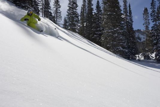 Powder Skiing in Park City