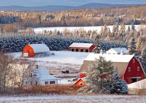 Aroostook County Winter Barn