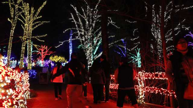 Christmas Light Shows - Bull Run Festival & More | Fairfax County, VA