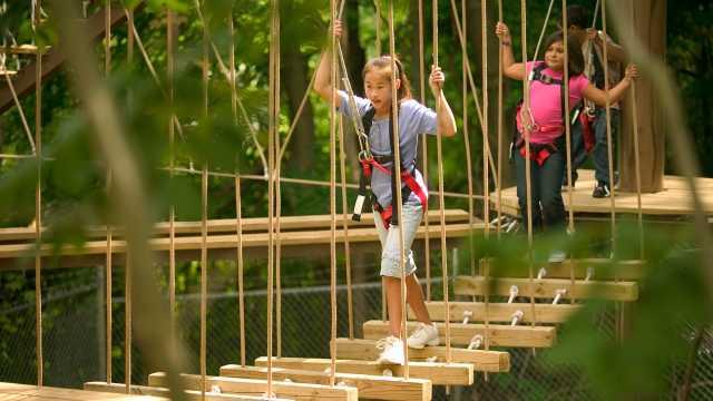 Zoo Ropes