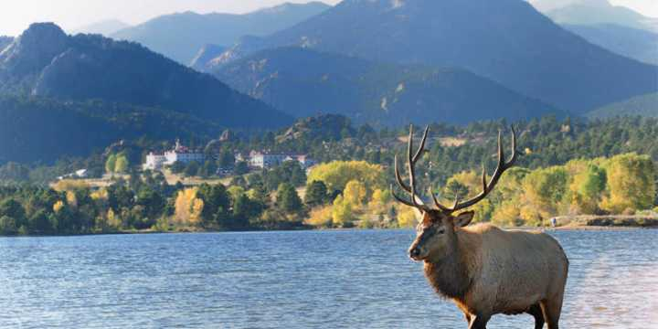 frequently asked questions faqs estes park colorado