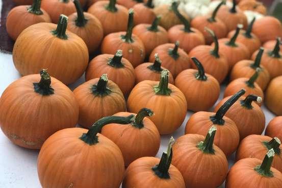 Pumpkins at the Capitol