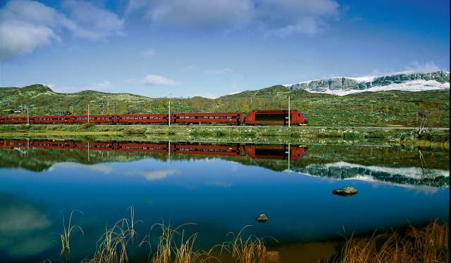 Train riding through a sunny landscape near the water on the Bergen Railway, Fjord Norway