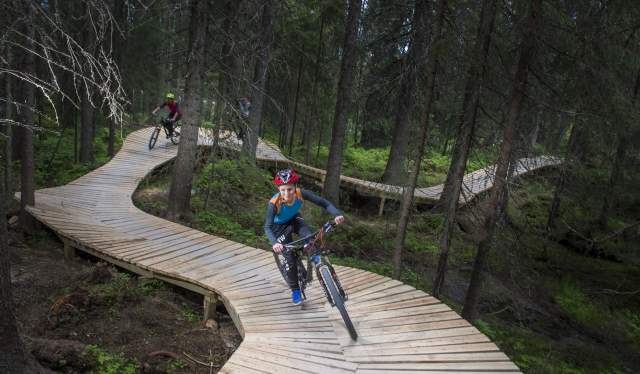 Un bambino in bici sul flow trail Magic Moose a Trysil Bike Arena, Norvegia orientale