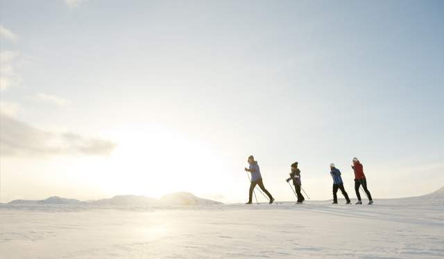 A family cross-country skiing on a sunny day in Hallingdal, Eastern Norway