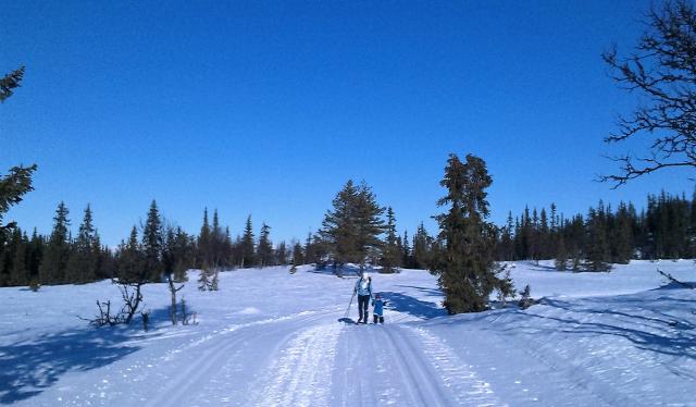 Skitur på Heimstølhovda, Ål i Hallingdal