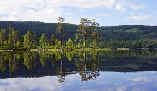 Vesleflatan, Nordmarka
