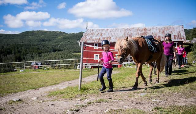 Horse-back riding in Skarslia and the mountains of Bergsjø, Ål in Hallingdal