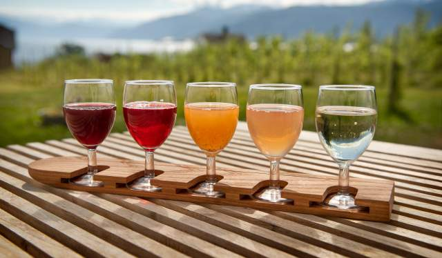 Five glasses of cider in different colours at Ciderhuset Balholm in Sognefjord, Fjord Norway