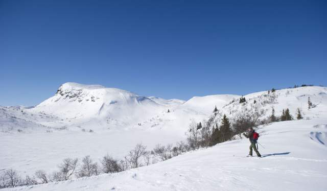 Skiing in the mountains