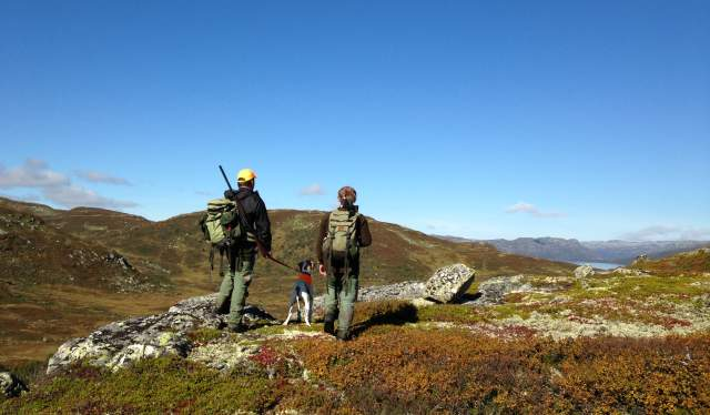 Hunting in the Setesdal mountains