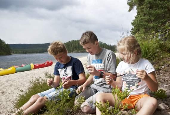 schwedische familie, die fkk camp