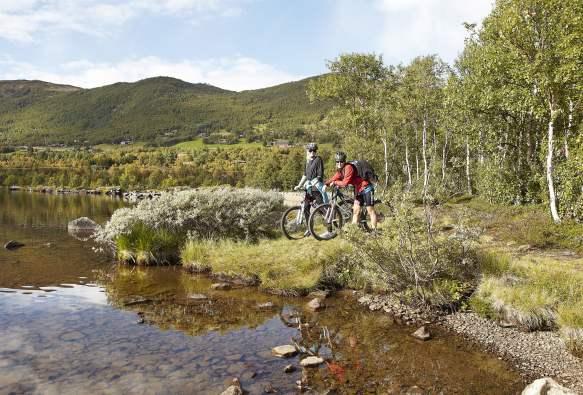 kart over sykkelruter i norge Nasjonale sykkelruter   10 lange sykkelturer gjennom Norge