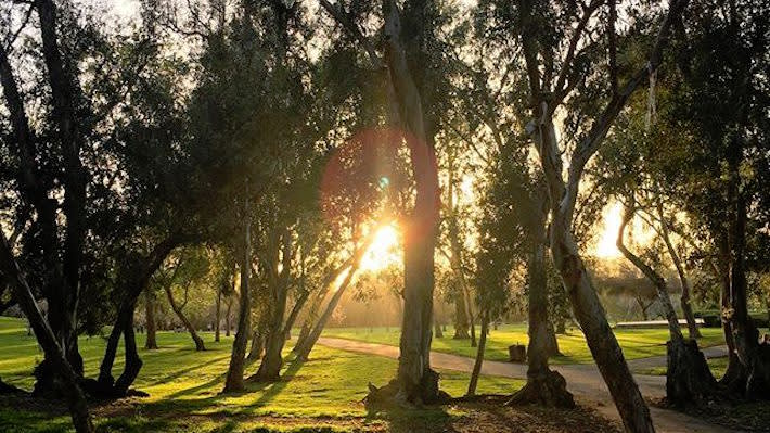 Just Five Miles From The Huntington Beach Pier Sprawls Central Park A Lush 350 Acre Oasis Lauded As Largest City Owned In Orange