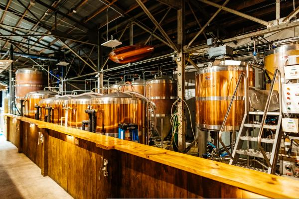 tarpon river brewery