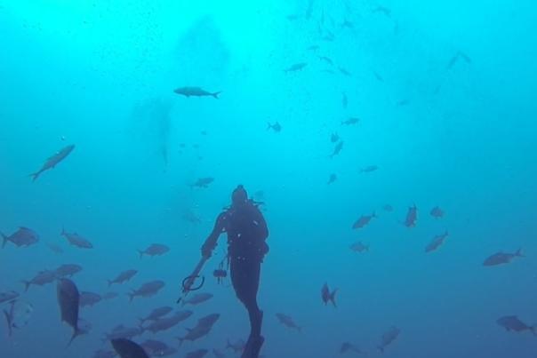 PCB Diving image