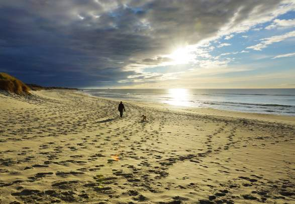 A person walking their dog on Orrestranda beach near Norwegian Scenic Route Jæren in Fjord Norway