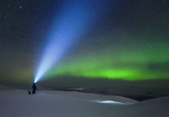 Man with headlamp looking at the northern lights during winter in Helgeland
