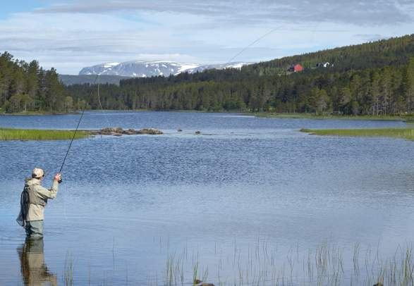 Fishing in Skurdalen