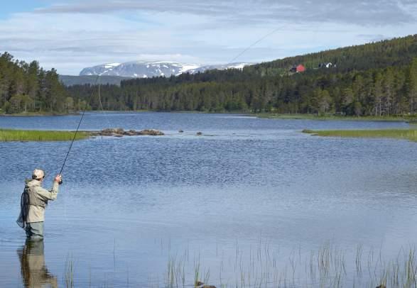 Fishing in Skurdalen