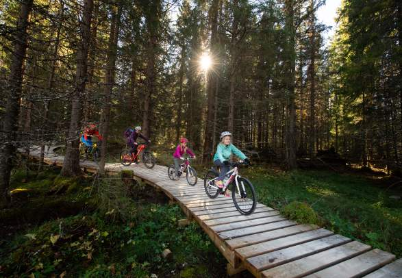 A family of four is biking through the woods in Trysil bike arena in Trysil, Eastern Norway.