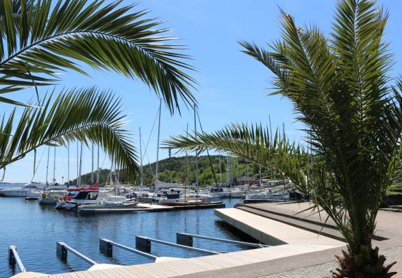 Palms and boats along the beach promenade in Kristiansand