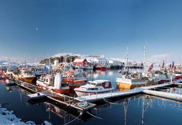 Bli med til fiskemottaket Vandsøya under Skreifestivalen
