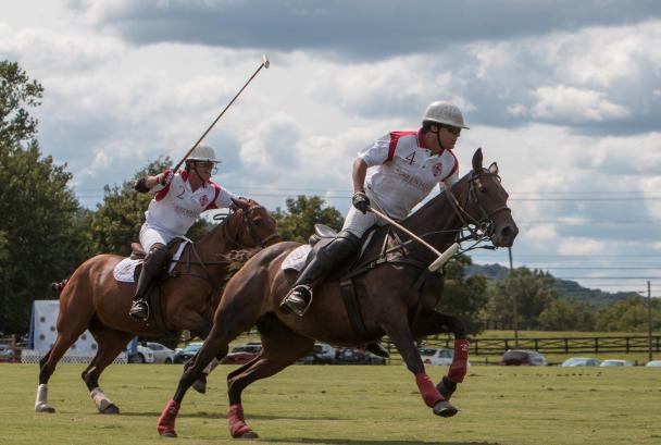 Annual Polo Classic