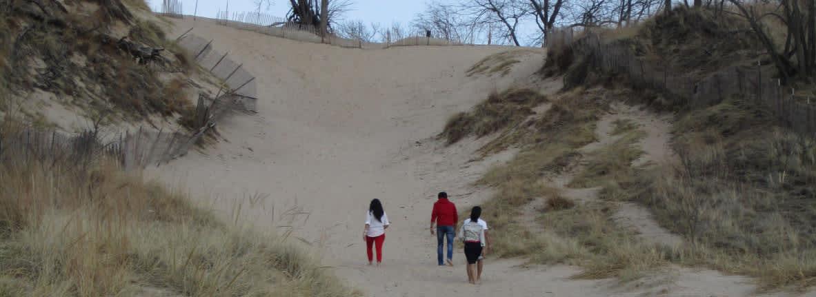 Dunes-to-climb-Indiana-Dunes-State-Park