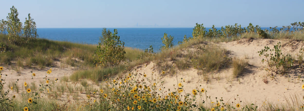 Marquette-Park-Gary-Indiana-Outdoor-Things-to-Do