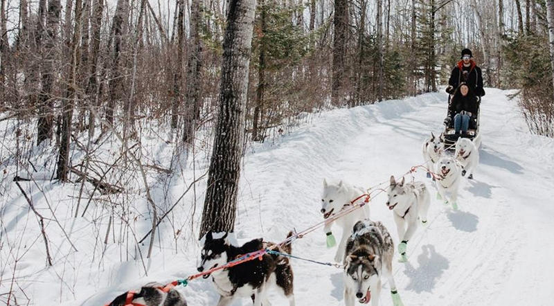 Harness Adventure Mushing Co., Richer Manitoba