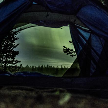 nordlys i telt