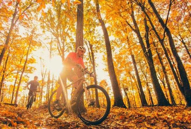 mountain biking trails for fall colors in virginia s blue ridge