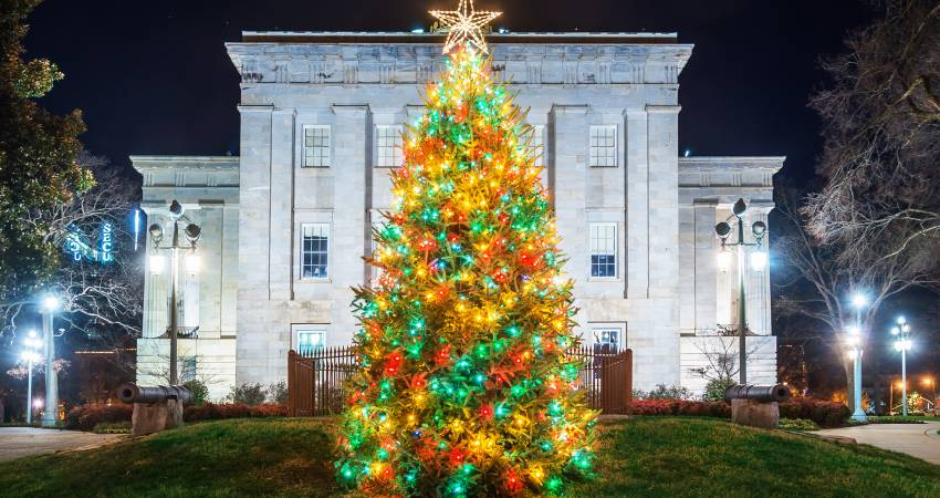 Holiday Favorites: Light Displays and Christmas Tree Lightings in ...