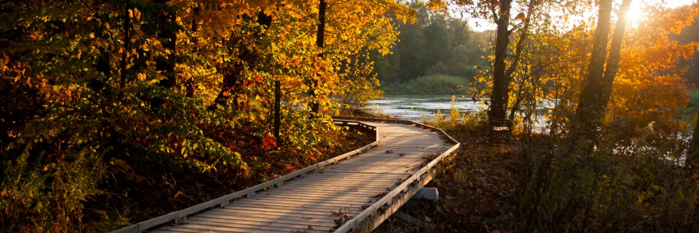 Lake Griffy Boardwalk