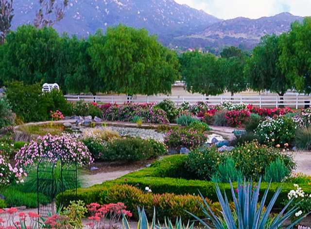 Hidden Gems to Discover In Temecula | Visit Temecula Valley