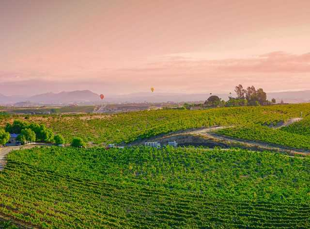 September Is Wine Month In Temecula California | Visit Temecula Valley