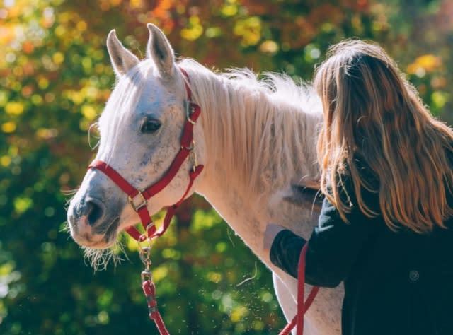 Rosemary Sanctuary - Fall - Photo by Beautiful Destinations2