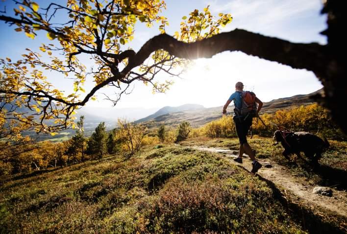Løping i Oppdal