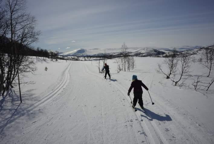 Skiløypa mellom Grøtsætra og Skaret