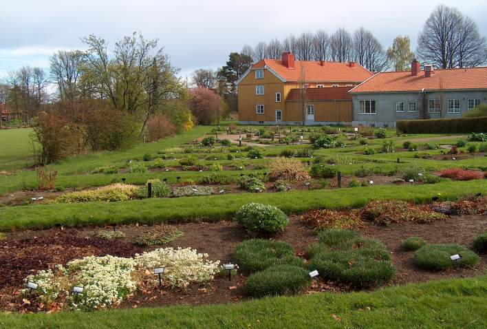 Ibsen's herbal garden at Dømmesmoen in Grimstad