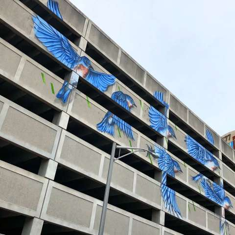 Albany Parking Garage Mural
