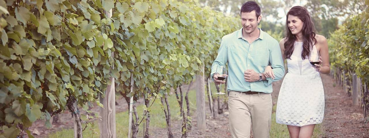 Copy of Bucks County Wine Trail