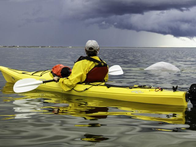 Gliding through Churchill River with  Frontiers North Adventures