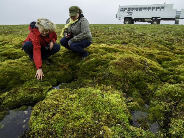 Frontiers North Adventure summer Tundra Buggy Excursion
