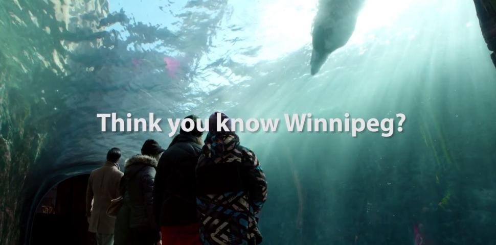 Video Thumbnail - youtube - Think You Know Winter | Winnipeg