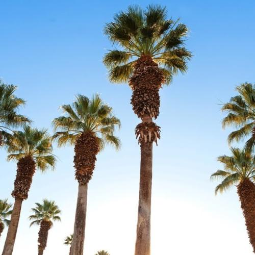 Video Thumbnail - youtube - Plan Your Summer Getaway to Greater Palm Springs