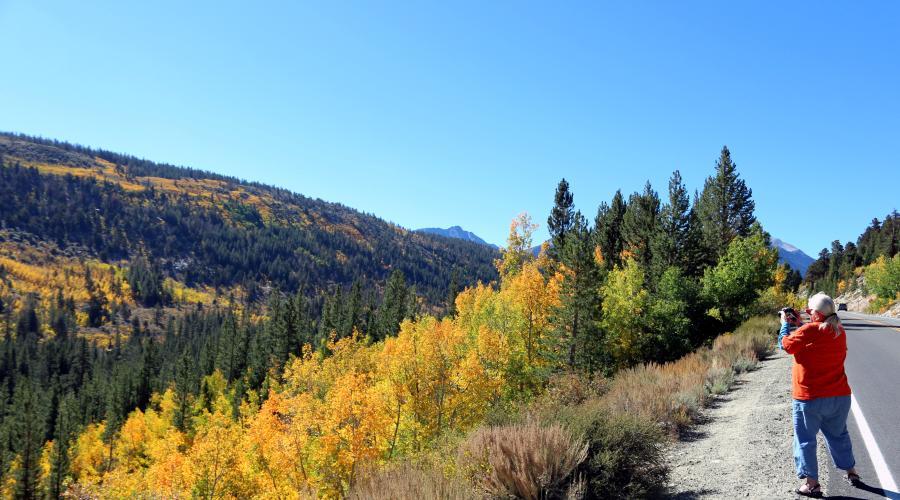 Rock Creek Road Fall Colors