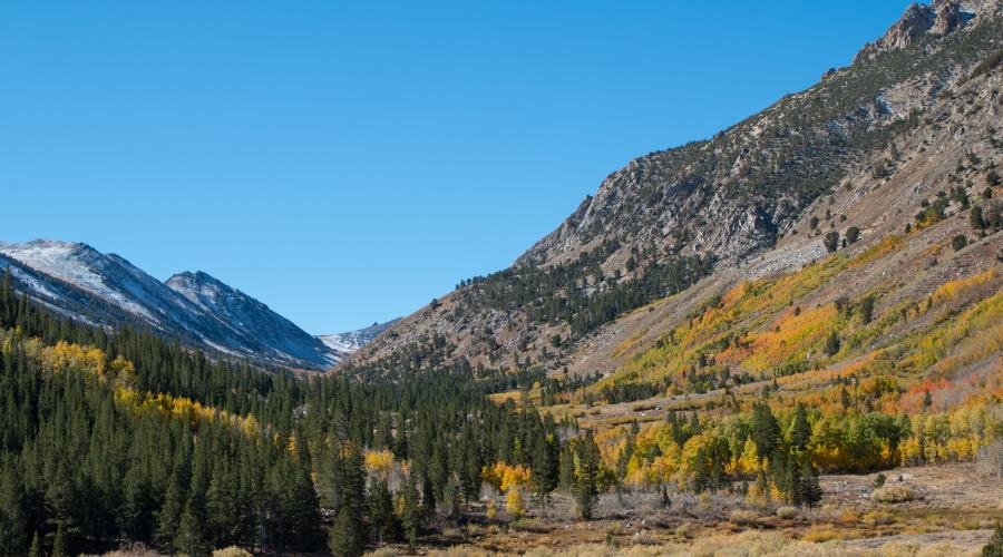 Molybdenite Canyon Trail Fall Colors