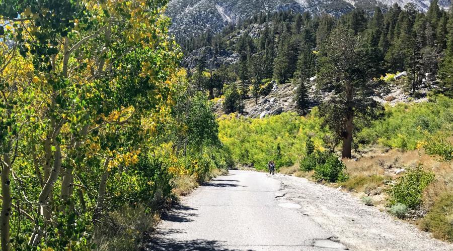 Upper Rock Creek Road